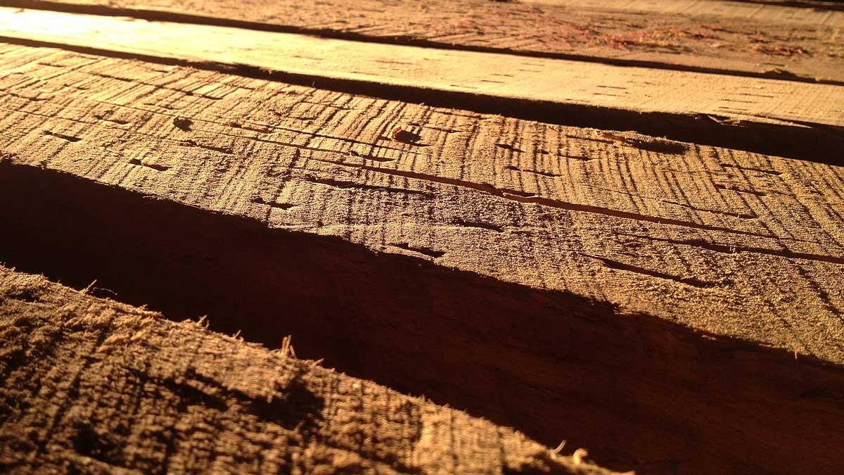 warm-wood-timber-drying-rail-yard-studios.jpg